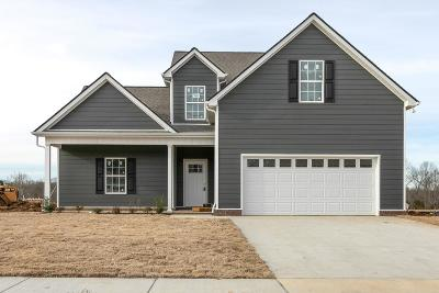 Spring Hill Single Family Home For Sale: 715 Mitscher Dr ( Lot 42)