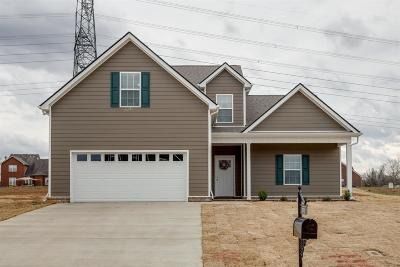 Spring Hill Single Family Home For Sale: 702 Mitscher Dr (Lot 52)