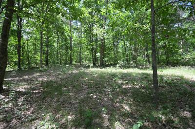 Residential Lots & Land For Sale: 9 Bridal Veil S