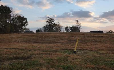 Christian County, Ky, Todd County, Ky, Montgomery County Residential Lots & Land For Sale: 16 Meadowland