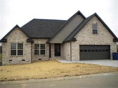 Marshall County Single Family Home For Sale: 1997 Rolling Meadow Ln
