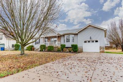 Smyrna Single Family Home Under Contract - Not Showing: 132 Hermitage Dr