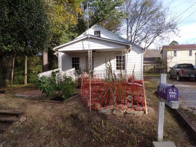 Mount Pleasant TN Single Family Home For Sale: $34,900