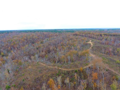 Hohenwald Residential Lots & Land For Sale: McCord Hollow Rd