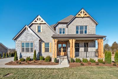 Nolensville Single Family Home For Sale: 113 Hankins Court #173