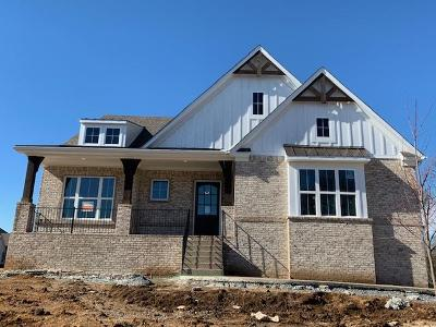 Nolensville Single Family Home Under Contract - Not Showing: 1001 Grasshopper Court #423