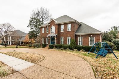 Hendersonville Single Family Home For Sale: 120 Blue Ridge Dr