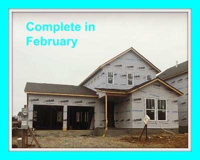 Hendersonville Single Family Home For Sale: 429 Abington Drive #528
