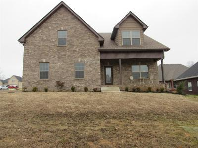 Ashland City Single Family Home For Sale: 1035 Harmony Trail