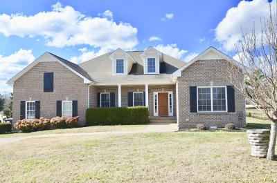 Clarksville Single Family Home For Sale: 710 Dixie Bee Rd