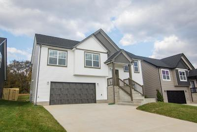 Clarksville Single Family Home For Sale: 52 Eagles Bluff