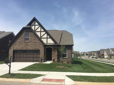 Lebanon Single Family Home For Sale: 1395 Woodside Drive