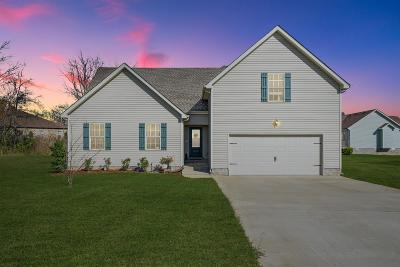 Clarksville Single Family Home For Sale: 591 Tracy Ln