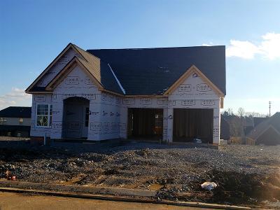 Hendersonville Single Family Home For Sale: 742 Canter Lane - Lot 447