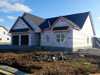 Hendersonville Single Family Home For Sale: 734 Canter Lane - Lot 449