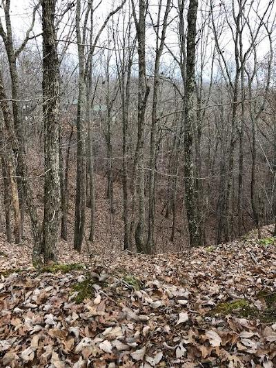 Holladay Residential Lots & Land Under Contract - Not Showing: Robin Cv