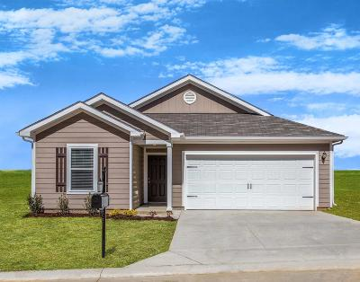 Columbia Single Family Home For Sale: 2524 Queen Bee Dr