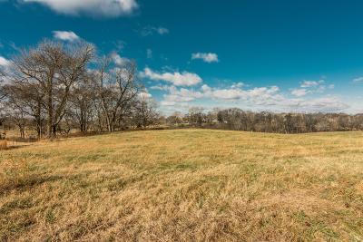 Mount Juliet Residential Lots & Land For Sale: 741 Saundersville Ferry Road