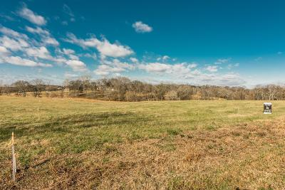 Mount Juliet Residential Lots & Land For Sale: 685 Saunderville Ferry Road