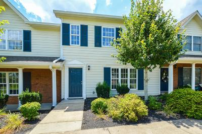 Hendersonville Condo/Townhouse For Sale: 113 Cages Rd Apt 2