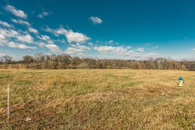 Mount Juliet Residential Lots & Land For Sale: 675 Saunderville Ferry Road