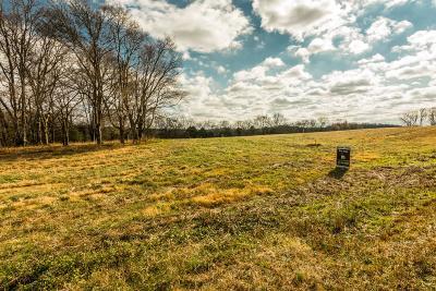 Mount Juliet Residential Lots & Land For Sale: 940 York Road