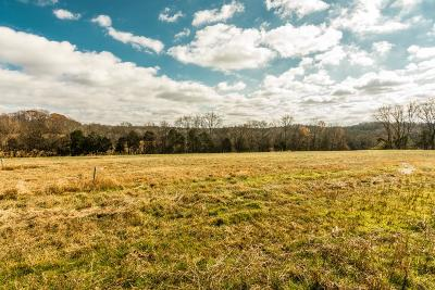 Mount Juliet Residential Lots & Land For Sale: 900 York Road