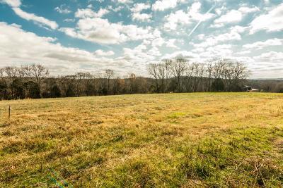 Mount Juliet Residential Lots & Land For Sale: 880 York Road