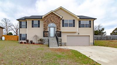 Clarksville Single Family Home For Sale: 1084 Freedom Dr