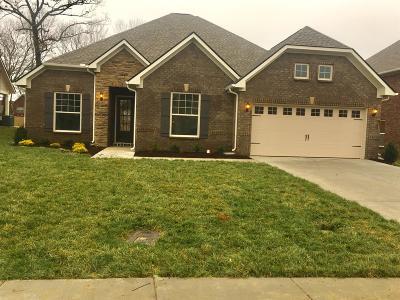 Murfreesboro Single Family Home For Sale: 1420 Burrows Avenue 103 Cho