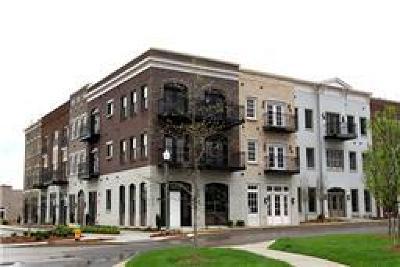 Franklin Rental For Rent: 6151 Rural Plains Cir #206