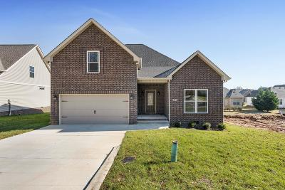 Springfield TN Single Family Home For Sale: $245,000