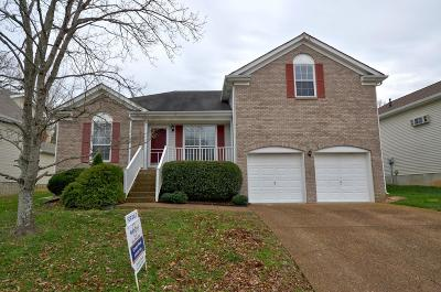 Franklin Single Family Home For Sale: 1064 Meandering Way