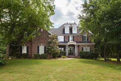 Rutherford County Single Family Home For Sale: 124 Wyndham Cove