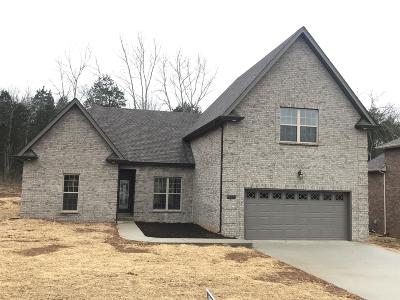 Smyrna Single Family Home For Sale: 5310 Patience Dr