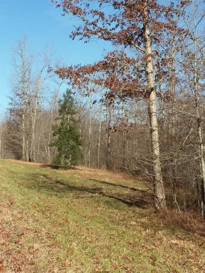 Van Buren County Residential Lots & Land For Sale: Holly Ln - Lot 91a