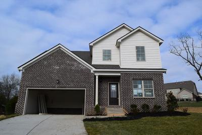 Smyrna Single Family Home For Sale: 5728 Hidden Creek