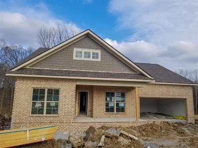Mount Juliet Single Family Home For Sale: 515 Cunningham Court, Lot #214