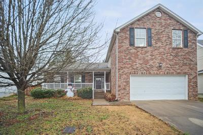 Davidson County Single Family Home For Sale: 3549 Mt View Ridge Dr