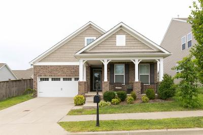 Davidson County Single Family Home For Sale: 2540 River Trail Dr