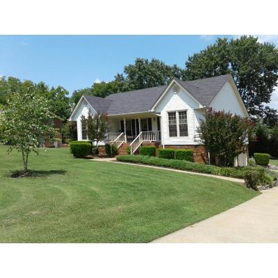 Maury County Single Family Home For Sale: 1430 Spainwood St