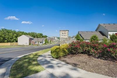 Davidson County Single Family Home For Sale: 2115 Portway Alley