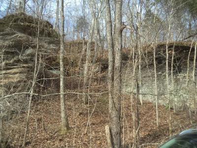 Tennessee Ridge Residential Lots & Land For Sale: Lewis Branch Rd.