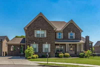 Williamson County Single Family Home For Sale: 4008 Gari Baldi Ct