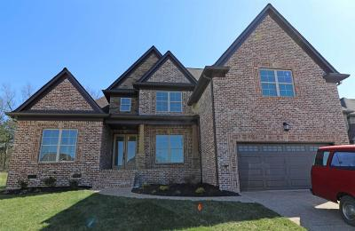 Mount Juliet Single Family Home For Sale: 12 Hickory Creek Circle