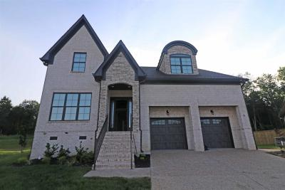 Mount Juliet Single Family Home For Sale: 14 Hickory Creek Circle