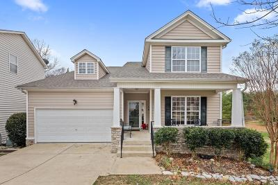 Nashville Single Family Home For Sale: 449 Stone Chimney Ct