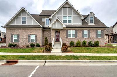 Davidson County Single Family Home For Sale: 2738 Lakeland Dr