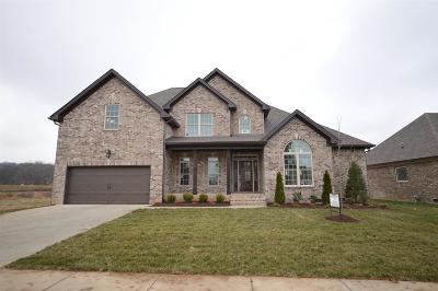 Spring Hill Single Family Home For Sale: 4103 Miles Johnson Pkwy (272)