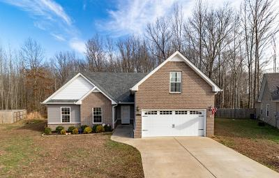 Clarksville Single Family Home For Sale: 578 Cameo Ct